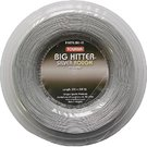 Tourna Big Hitter Silver Rough 16 (660 ft.) Reel