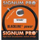 Signum Pro Tornado 17G Tennis String